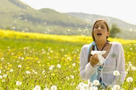Allergi og akupunktur
