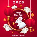 Nytår hvid rotte